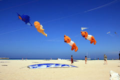 Mediterranean beach kite competition, Italy Stock Images
