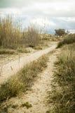 Mediterranean beach. Path in a mediterranean beach Royalty Free Stock Photo