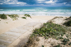 Mediterranean beach. At Valencia coast, with dunes and a view to El Montg Stock Photos