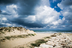 Mediterranean beach. At Valencia coast, with dunes and a view to El Montg Royalty Free Stock Image