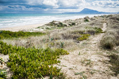Mediterranean beach. At Valencia coast, with dunes and a view to El Montg Stock Images