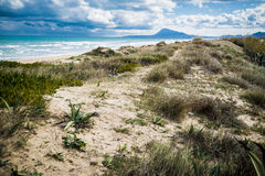 Mediterranean beach. At Valencia coast, with dunes and a view to El Montg Stock Photography