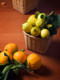 Mediterranean citrus harvest Royalty Free Stock Photography