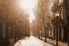 Mediterranean city street with some trees at sunset . People walking. Royalty Free Stock Photos