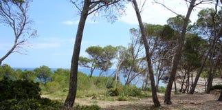 Mediterranean coast. Island of Mallorca, Spain Royalty Free Stock Image