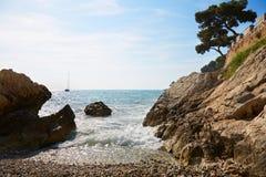 Mediterranean coast and sea with maritime pine Stock Photo