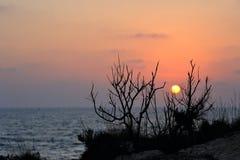 Mediterranean coast Royalty Free Stock Photos