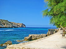 Mediterranean coast, turquoise water. Quay wall at mediterranean coast, turquoise water, rocks, and tree Royalty Free Stock Images