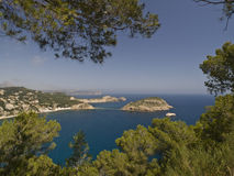 Mediterranean Coastline. With capes and islands framed with the branches of some pine trees Royalty Free Stock Photos