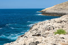 Mediterranean coastline of Gozo, Malta Stock Images