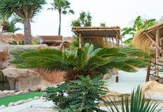Mediterranean courtyard. Royalty Free Stock Photos