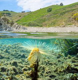 Mediterranean cove above and below water surface Stock Images