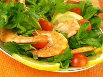 Mediterranean diet, closeup Royalty Free Stock Image