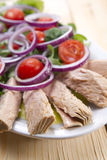 Plate of tuna steaks Royalty Free Stock Photography