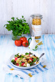 Mediterranean Farfalle salad with dry tomatoes and pine cores. A Mediterranean Farfalle salad with dry tomatoes and pine cores Royalty Free Stock Image