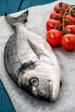 Mediterranean fish delicacy Dorado Royalty Free Stock Image