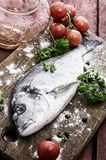 Mediterranean fish delicacy Dorado Stock Photography