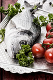 Mediterranean fish delicacy Dorado Royalty Free Stock Photography