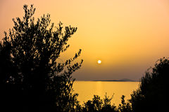 Mediterranean flora at sea coast lit by summer sun at golden hour before sunset in Macedonia Stock Photo
