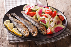 Mediterranean food: grilled sardines with fresh vegetable salad. Close-up on a plate. horizontal Stock Photography