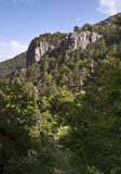 Mediterranean Forest. Vertical image of a mediterranean forest, with a rock cliff in the centre of the image Stock Images