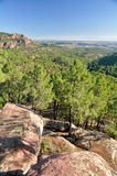 Mediterranean forest at Albarracin range, Spain Royalty Free Stock Photos