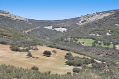 Mediterranean forest. Over quartzite mountains. Photo taken in Montes de Toledo, Ciudad Real Province, Spain. The Montes de Toledo are located in the central Royalty Free Stock Image