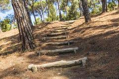 Mediterranean forest. Path of stairs in a Mediterranean forest in Costa Brava, Catalonia, Spain Stock Photos