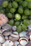 Grapes, figs and shells Stock Image