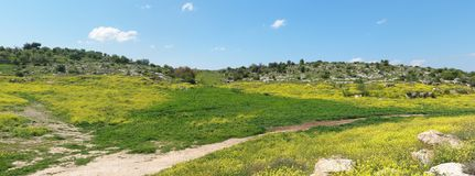 Mediterranean hills landscape in spring Stock Photo