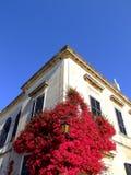 Mediterranean Home Stock Image