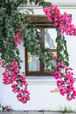 Mediterranean house. Door and window Royalty Free Stock Images