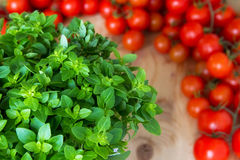 Mediterranean ingredients Stock Photo