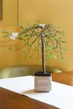 Mediterranean interior - bonsai Royalty Free Stock Photography