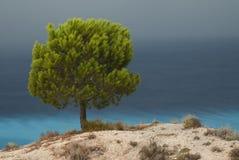 Mediterranean landscape Stock Images