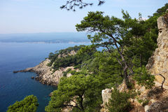 Mediterranean landscape. Coastline in the south of france. Mediterranean coast Stock Images