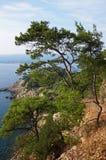 Mediterranean landscape. Coastline in the south of france. Mediterranean coast Stock Photos