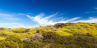 Mediterranean Landscape Royalty Free Stock Image