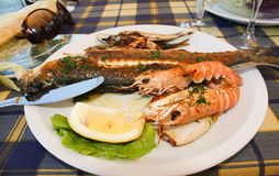Mediterranean lunch time. Shrimp, fish and lemon Royalty Free Stock Images