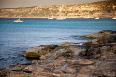 Mediterranean marine landscape with some boats in the background. And a green plant on the first view Royalty Free Stock Images