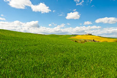 Mediterranean Meadow Royalty Free Stock Image