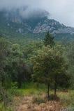 Mediterranean mountain Royalty Free Stock Image
