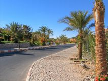 Landscape in front of the hotel in Egypt stock image