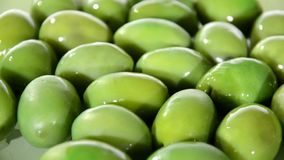 Mediterranean olives stock video