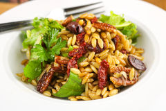 Mediterranean Orzo Salad. With sun dried tomatoes, basil and Parmesan cheese Royalty Free Stock Image