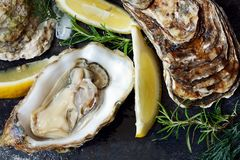 Mediterranean oysters on a dark background with ice and lemon slices. Sea delicacy. Open oysters Stock Photo