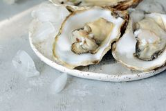 Mediterranean oysters on a light background with ice. Sea delicacy. Mediterranean oysters on a dark background with ice and lemon slices. Sea delicacy Stock Photography
