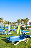 Mediterranean palm beach with empty sunbeds in morning, Paphos, Cyprus Royalty Free Stock Image