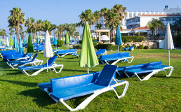Mediterranean palm beach with empty sunbeds in morning, Paphos, Cyprus Royalty Free Stock Photography