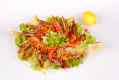 Mediterranean prawns Royalty Free Stock Images